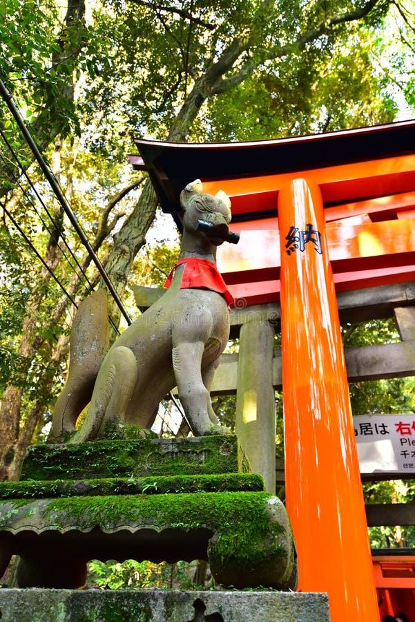 Αλεπού στην ιαπωνική λάρνακα στοκ φωτογραφία