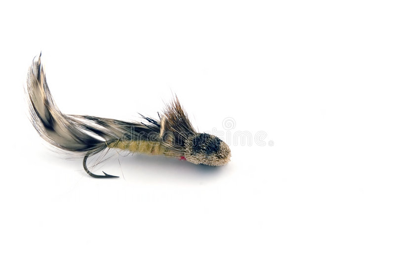 αλιεία ΙΙΙ θελγήτρου στοκ εικόνα