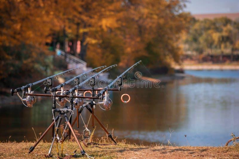 Αλιεία της ράβδου στη λίμνη στοκ εικόνες