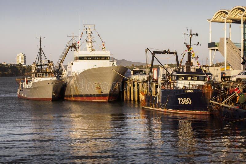 Αλιευτικά σκάφη δεμένος στο λιμάνι οδογεφυρών του Ώκλαντ στοκ φωτογραφία