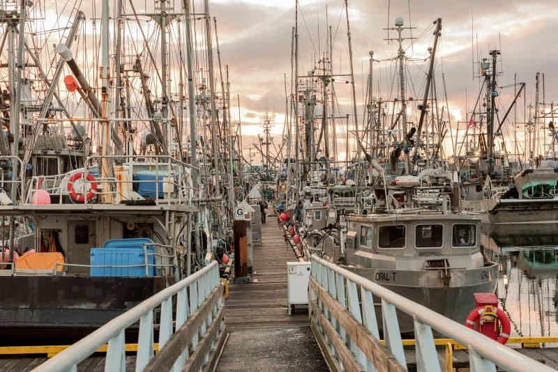 Αλιευτικά σκάφη στη μαρίνα στοκ εικόνα με δικαίωμα ελεύθερης χρήσης