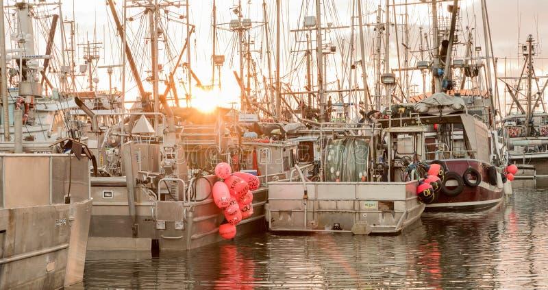 Αλιευτικά σκάφη στη μαρίνα στοκ εικόνες με δικαίωμα ελεύθερης χρήσης