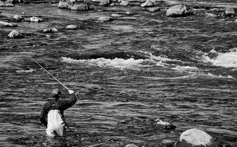 αλιεύοντας μύγα στοκ φωτογραφία με δικαίωμα ελεύθερης χρήσης