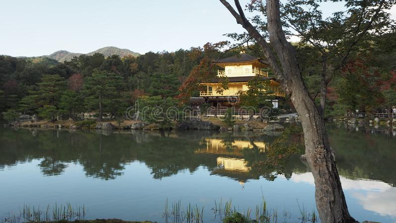 Αλλαγή Κιότο Ιαπωνία χρώματος φύλλων ναών Ji Kinkaku στοκ εικόνες