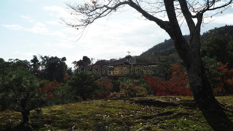Αλλαγή Κιότο Ιαπωνία χρώματος φύλλων στοκ εικόνες