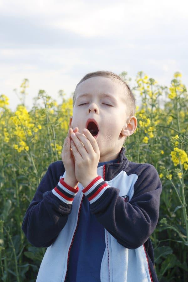 αλλεργία στοκ φωτογραφία με δικαίωμα ελεύθερης χρήσης