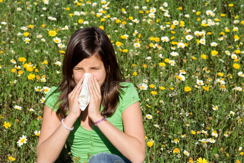 αλλεργία hayfever στοκ φωτογραφία