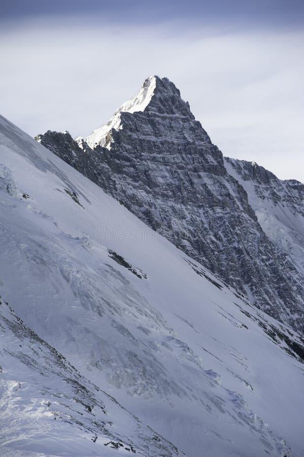 αλπικά βουνά στοκ εικόνες