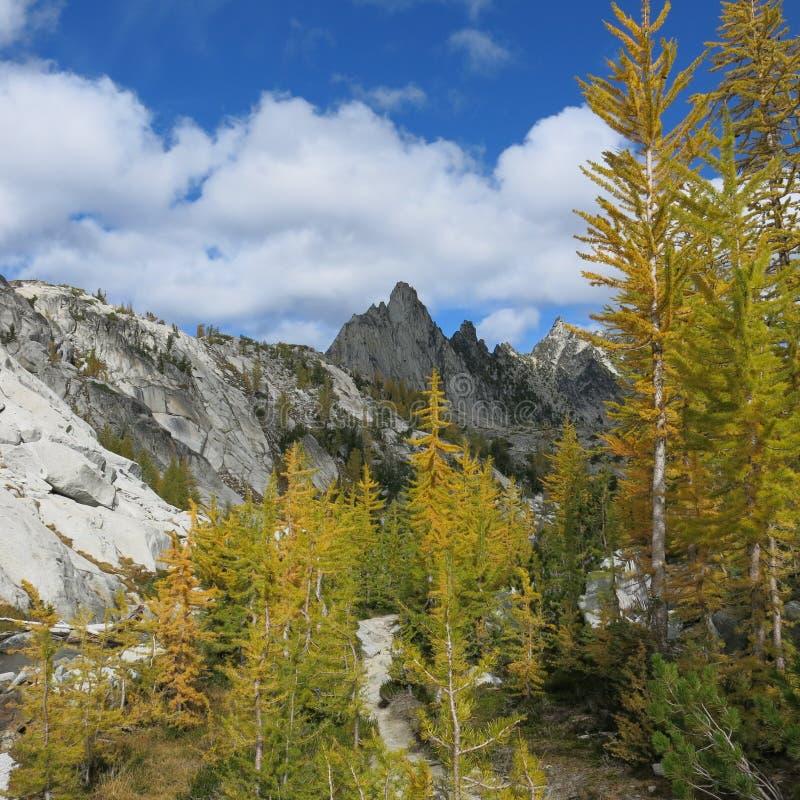 Αλπική περιοχή λιμνών enchantments του πολιτεία της Washington στοκ φωτογραφίες με δικαίωμα ελεύθερης χρήσης