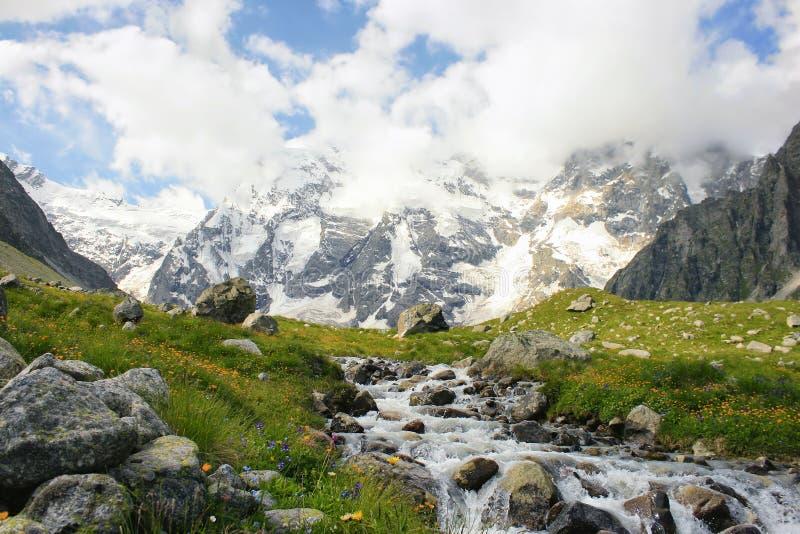 Αλπικό λιβάδι με τα διαφορετικά λουλούδια και τον ισχυρό ποταμό βουνών στοκ φωτογραφία με δικαίωμα ελεύθερης χρήσης