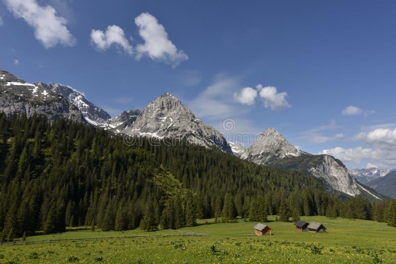 Αλπικό λιβάδι με τα ρομαντικά hayricks μπροστά από τη σειρά βουνών Mieminger Kette πλησίον στη λίμνη Seebensee, Τύρολο, Αυστρία στοκ εικόνα