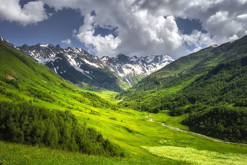 Αλπικό τοπίο βουνών τη φωτεινή ηλιόλουστη θερινή ημέρα Χλοώδες λιβάδι στη βουνοπλαγιά με τον ποταμό βουνών και το δύσκολο βουνό στοκ εικόνα