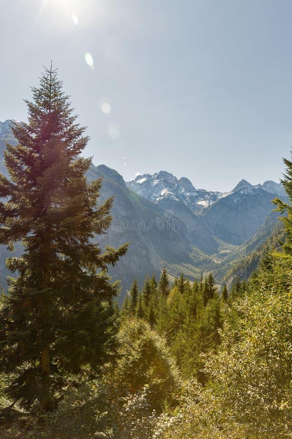 Αλπικό τοπίο σε δυτικό Carinthia, Αυστρία στοκ εικόνα