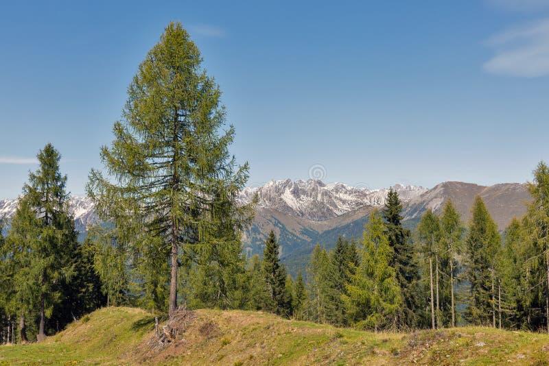 Αλπικό τοπίο σε δυτικό Carinthia, Αυστρία στοκ εικόνες με δικαίωμα ελεύθερης χρήσης