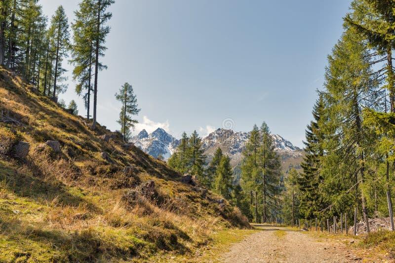 Αλπικό τοπίο σε δυτικό Carinthia, Αυστρία στοκ εικόνες