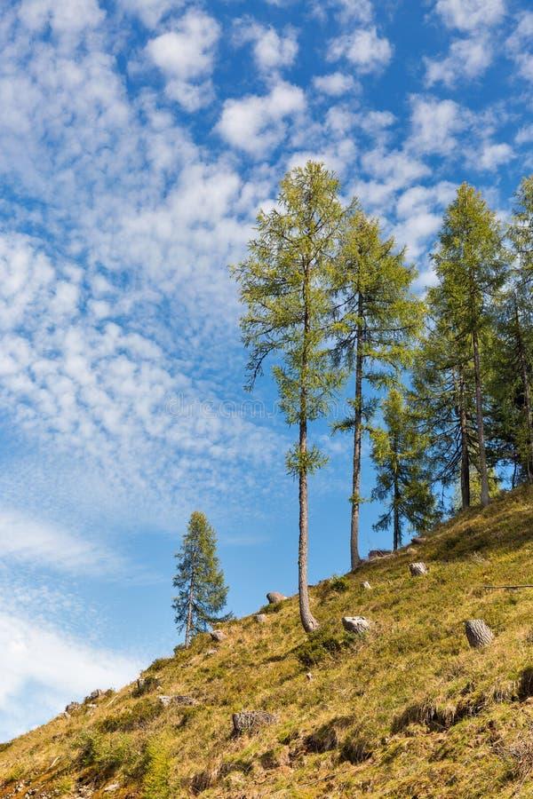 Αλπικό τοπίο σε δυτικό Carinthia, Αυστρία στοκ φωτογραφία με δικαίωμα ελεύθερης χρήσης