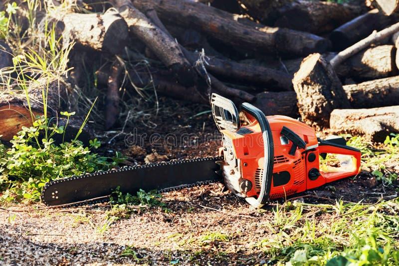 Αλυσιδοπρίονο μπροστά από έναν σωρό των ξύλινων κούτσουρων στοκ φωτογραφία