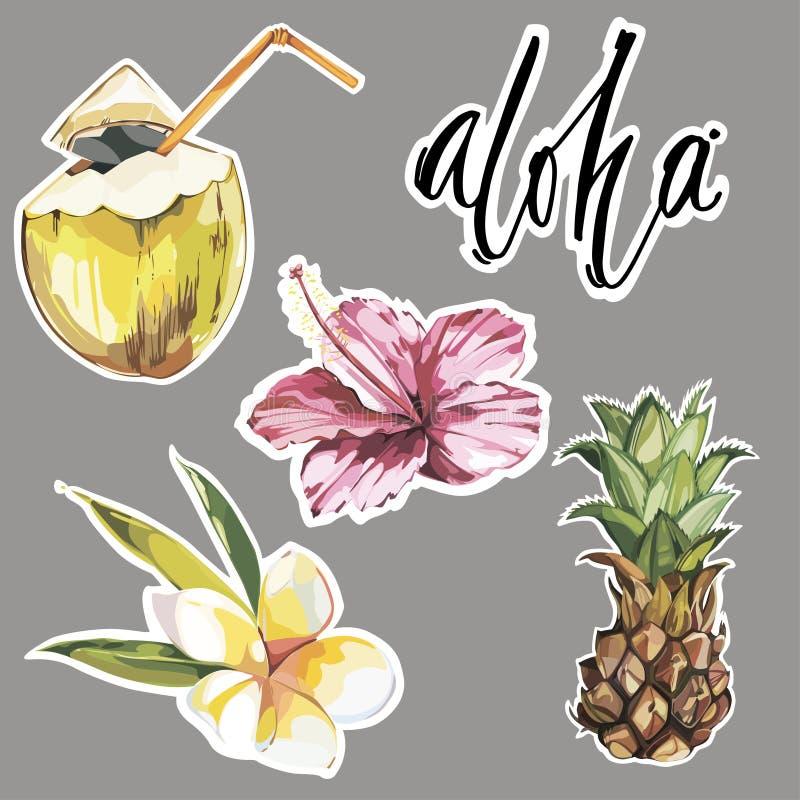 αλόης Σύνολο χαριτωμένων τροπικών αυτοκόλλητων ετικεττών με τα λουλούδια, την καρύδα και τον ανανά χαριτωμένη συλλογή αυτοκόλλητω απεικόνιση αποθεμάτων