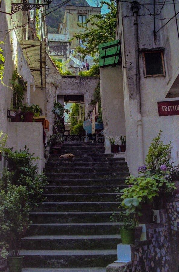 ΑΜΑΛΦΗ, ΙΤΑΛΙΑ, 1974 - μια παλαιά σκάλα αναρριχείται επάνω μεταξύ των σπιτιών της Αμάλφης στοκ εικόνα με δικαίωμα ελεύθερης χρήσης