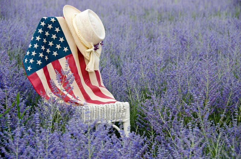 Αμερικανική σημαία στη ρωσική φασκομηλιά στοκ φωτογραφία με δικαίωμα ελεύθερης χρήσης