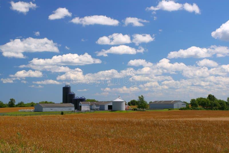 αμερικανικό αγροτικό έδα&ph στοκ φωτογραφίες