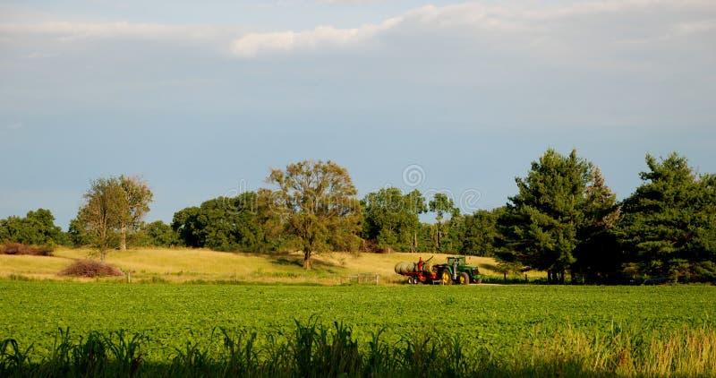αμερικανικό αγρόκτημα στοκ εικόνες με δικαίωμα ελεύθερης χρήσης