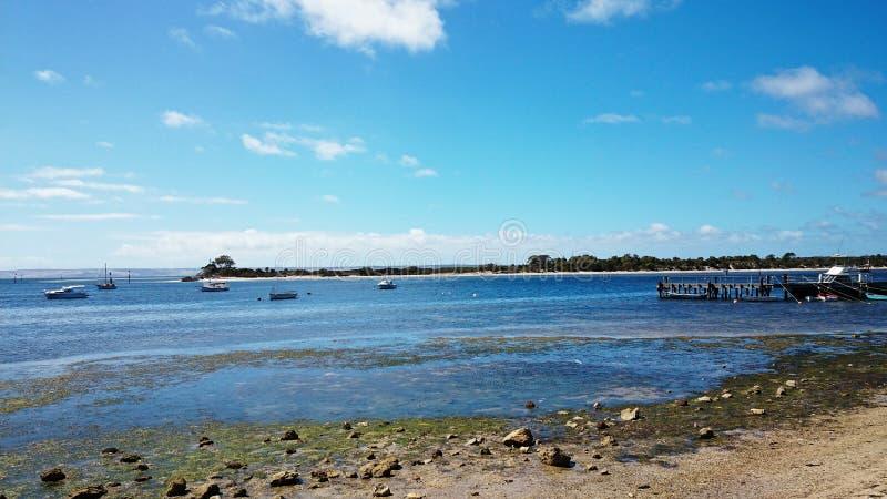 Αμερικανικό νησί καγκουρό ποταμών @, Αυστραλία στοκ φωτογραφία με δικαίωμα ελεύθερης χρήσης