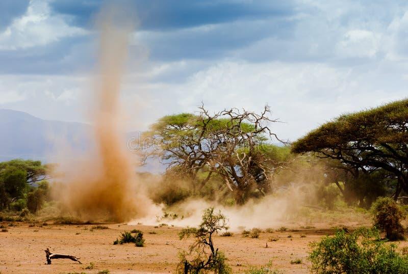 Αμμοθύελλα στο kenia στοκ φωτογραφίες με δικαίωμα ελεύθερης χρήσης