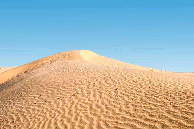 Αμμόλοφοι άμμου και μπλε ουρανός στοκ φωτογραφίες με δικαίωμα ελεύθερης χρήσης