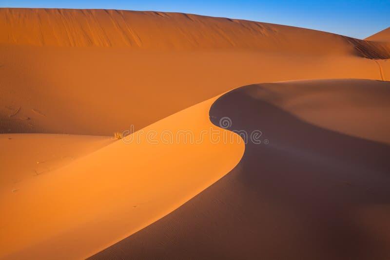 Αμμόλοφοι άμμου στην έρημο Σαχάρας, Merzouga, Μαρόκο στοκ εικόνες