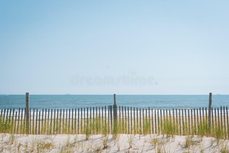 Αμμόλοφοι άμμου στην παραλία Rockaway, στις βασίλισσες, Νέα Υόρκη στοκ φωτογραφίες
