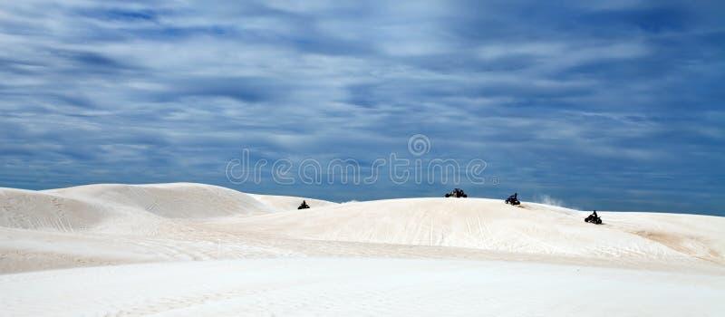 Αμμόλοφοι άμμου στοκ φωτογραφίες