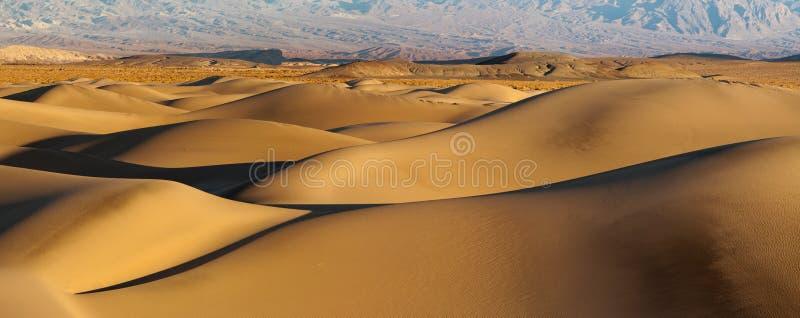 αμμόλοφοι ερήμων στοκ φωτογραφίες με δικαίωμα ελεύθερης χρήσης