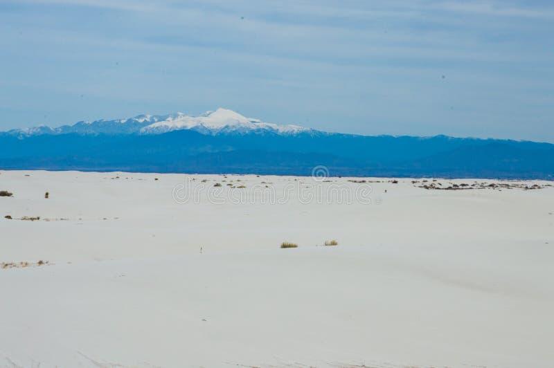 Αμμόλοφοι του άσπρου εθνικού μνημείου άμμων στοκ φωτογραφία με δικαίωμα ελεύθερης χρήσης