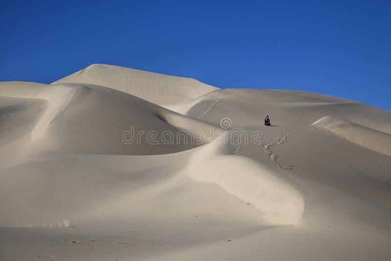 Αμμόλοφοι του EUREKA στοκ φωτογραφίες