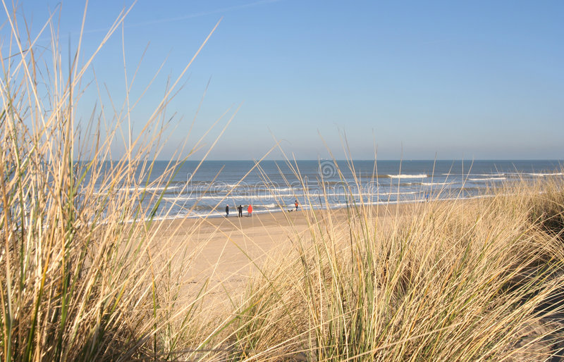 αμμόλοφοι beachwalkers στοκ φωτογραφίες με δικαίωμα ελεύθερης χρήσης
