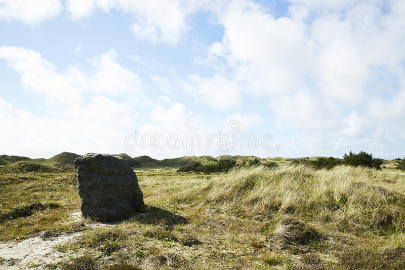 Αμμόλοφοι άμμου σε Hvide Sande, Δανία, κοντά στην ακτή Βόρεια Θαλασσών στοκ φωτογραφία
