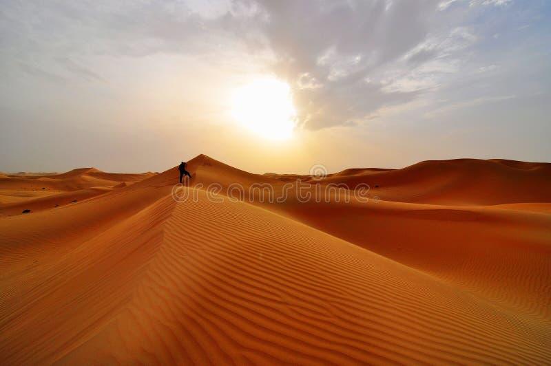 Αμμόλοφοι άμμου στην έρημο στοκ φωτογραφία με δικαίωμα ελεύθερης χρήσης