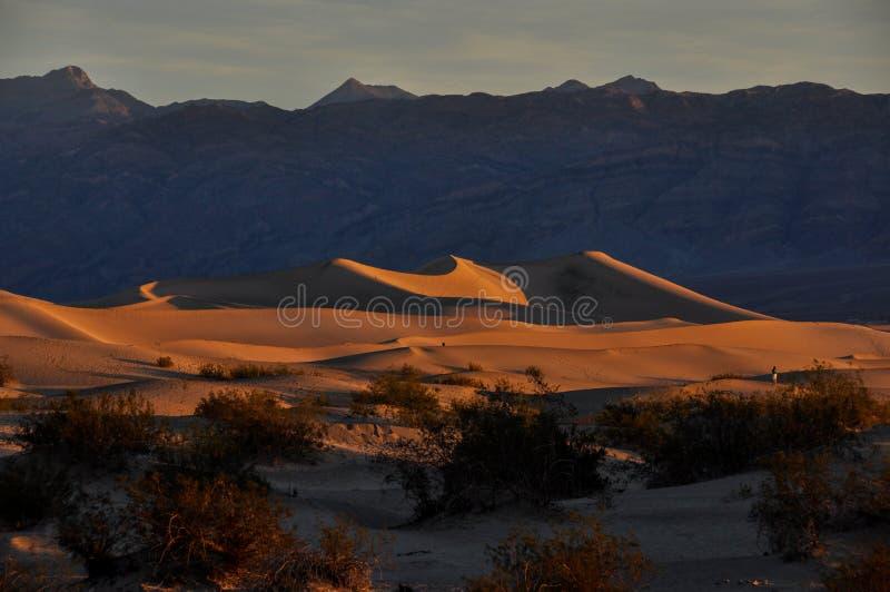 Αμμόλοφοι άμμου στο εθνικό πάρκο κοιλάδων θανάτου, Καλιφόρνια, ΗΠΑ στοκ φωτογραφίες με δικαίωμα ελεύθερης χρήσης
