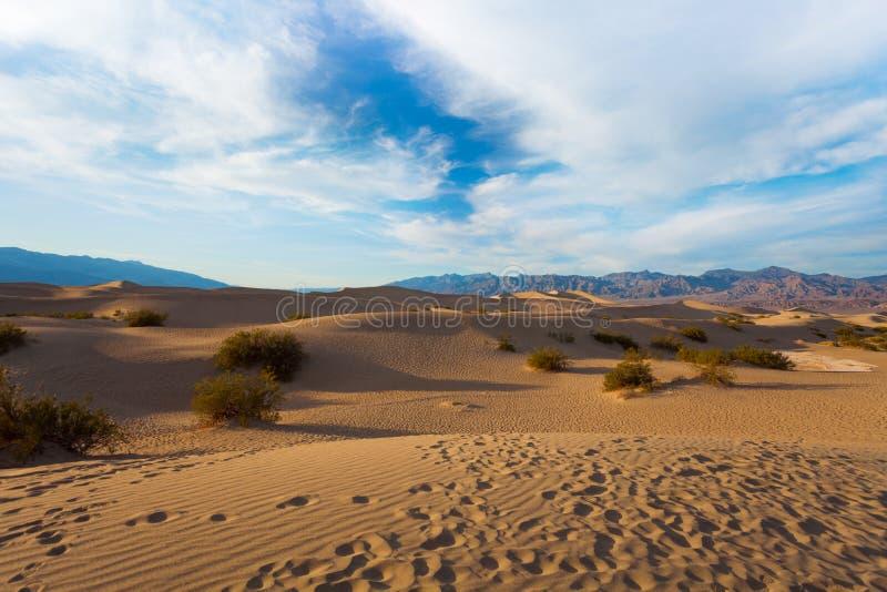 Αμμόλοφοι άμμου της κοιλάδας θανάτου στις σκιές βραδιού στοκ εικόνες