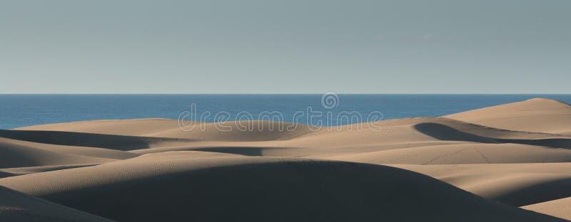 Αμμόλοφοι άμμου Maspalomas στοκ φωτογραφίες