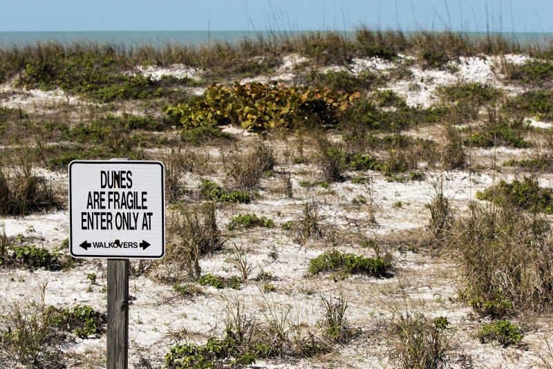 500 αμμόλοφοι λεπτοί αποφεύγουν το σημάδι στοκ φωτογραφία