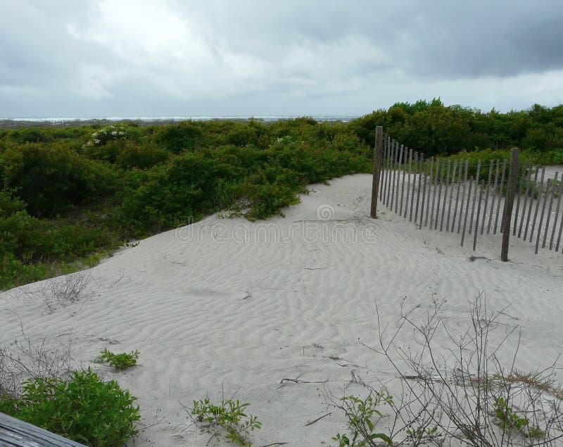 Αμμόλοφοι και φράκτης παραλιών στοκ εικόνες