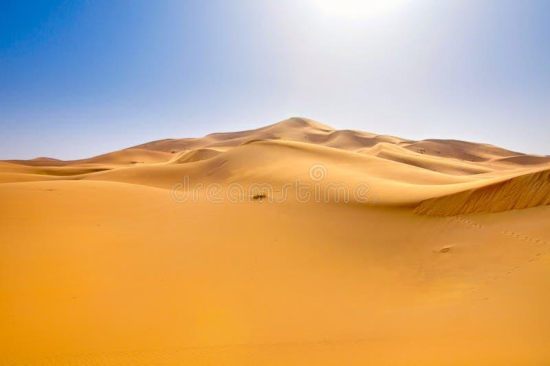 αμμόλοφοι Σαχάρα ερήμων στοκ φωτογραφίες