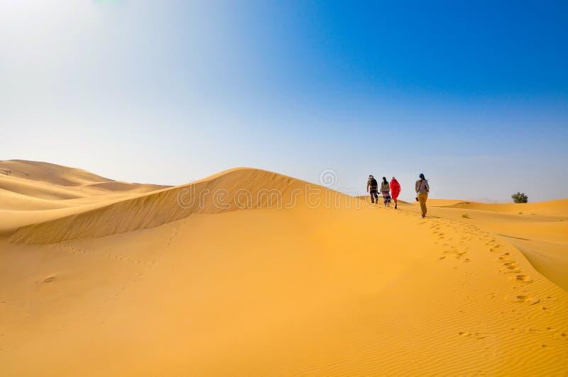 αμμόλοφοι Σαχάρα ερήμων στοκ εικόνες με δικαίωμα ελεύθερης χρήσης