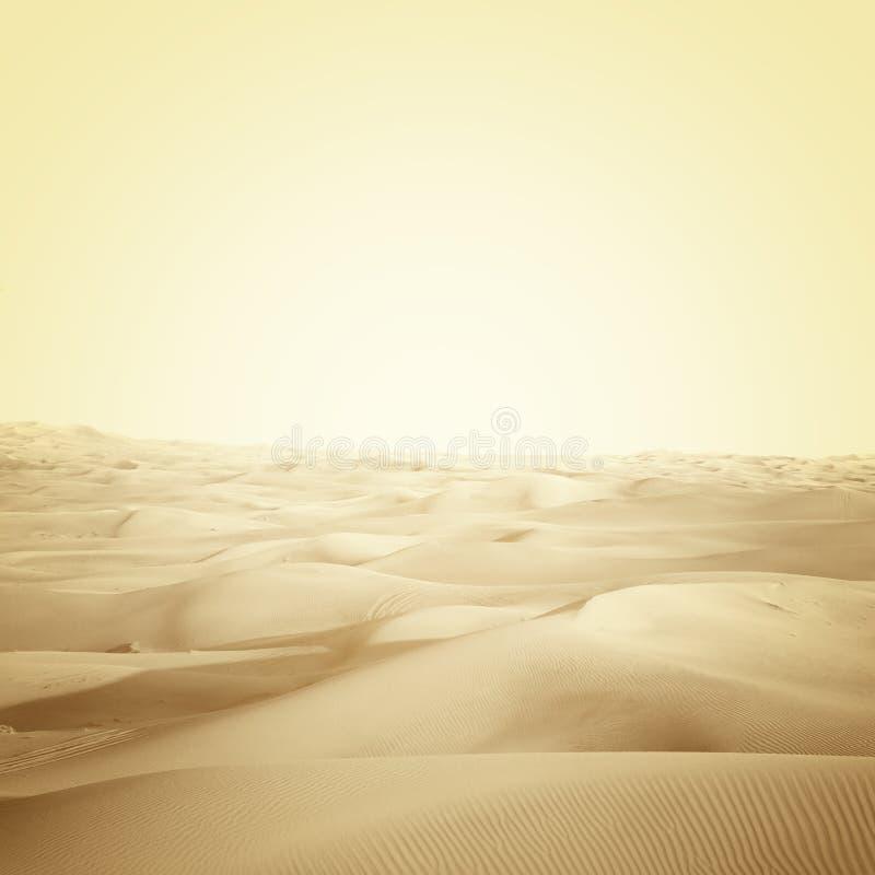 Αμμόλοφοι στην έρημο στοκ φωτογραφίες