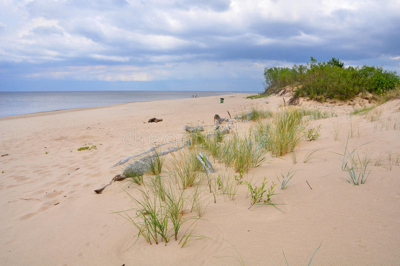 Αμμόλοφοι, Saulkrasti, η θάλασσα της Βαλτικής, Λετονία στοκ φωτογραφίες με δικαίωμα ελεύθερης χρήσης