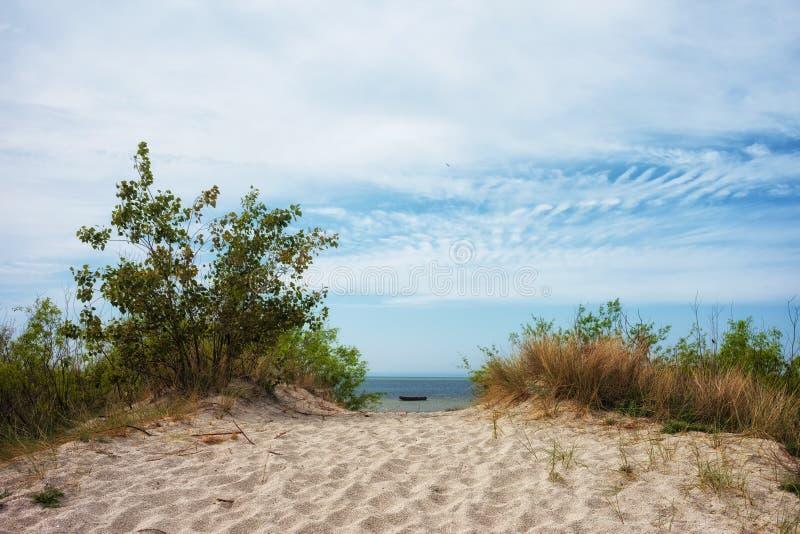 Αμμόλοφος άμμου στη θάλασσα της Βαλτικής σε Jastarnia στοκ εικόνα