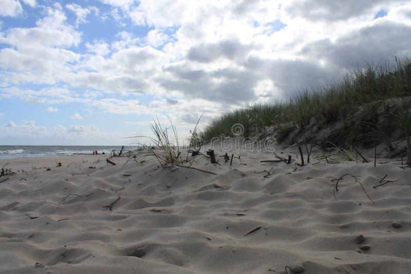 Αμμόλοφος στην παραλία της θάλασσας της Βαλτικής, Hel, Πολωνία στοκ εικόνες