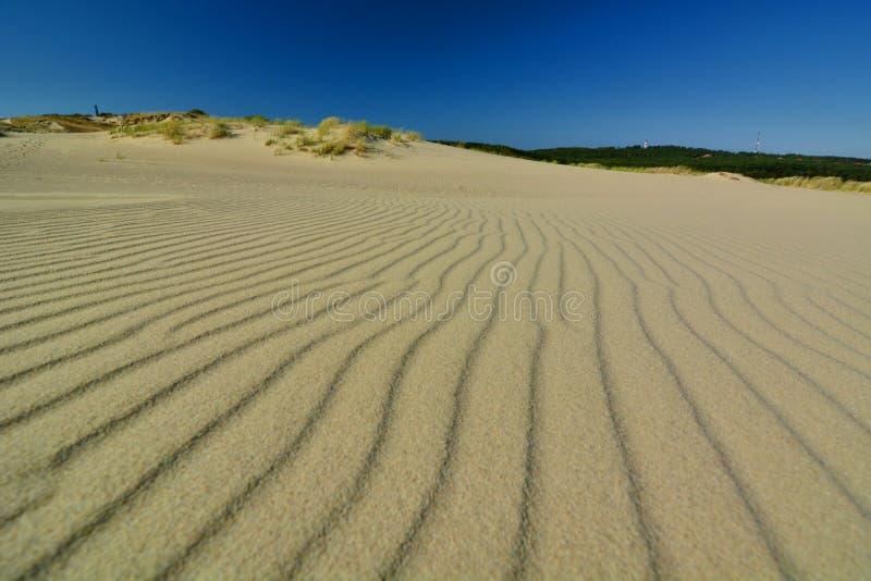 Αμμόλοφος Parnidis Nida Λιθουανία στοκ φωτογραφία